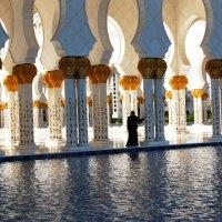 мечеть. ОАЭ :: Olga Golub
