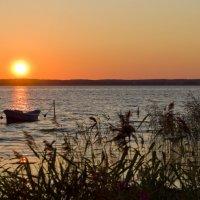 Озеро Селигер :: Наталья Андреева
