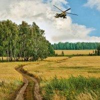 По полям :: Дмитрий Конев
