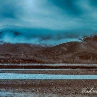 Утренний туман :: Денис Максимов