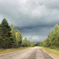 Дороги Смоленщины :: Алла Aпшиник