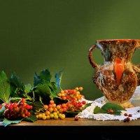 Рдеют ягоды калины... :: Валентина Колова