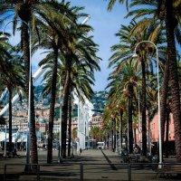 Genoa :: Alena Kramarenko