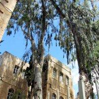 Иерусалим :: Герович Лилия