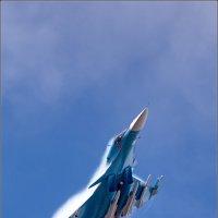 МАКС-2015 :: Валерий Шейкин