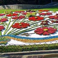 Выставка цветов :: Ростислав