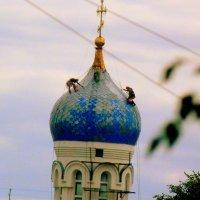"""""""мураши"""" на куполе :: Александр Прокудин"""