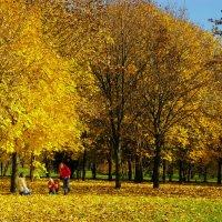 В осеннем парке. :: Александр Атаулин