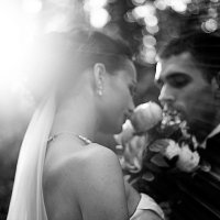 свадебная :: Andrey Stanislavovich