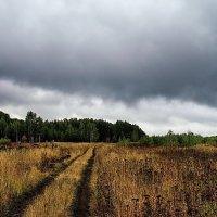 Августа осеннее ненастье... :: Лесо-Вед (Баранов)