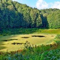 Красная поляна Сочи.Хмелевские озера :: Tata Wolf