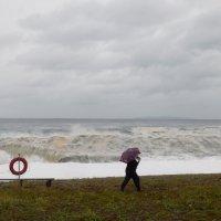 тайфун идёт... :: Татьяна Соловьева