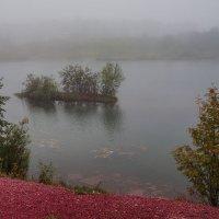 Островок в тумане :: Анатолий