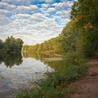 На реке :: Николай Алехин