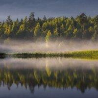 И плыл над озером туман :: Tamara Patrejeva