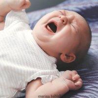 новорожденные :: Марина Бабич (Горишная)