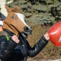 Лошадь :: Елена Маргиева