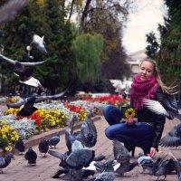 голубка 1 :: Алексей Клименко
