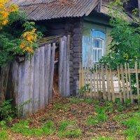 Осень в деревне... :: Галина Стрельченя