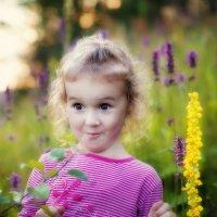 Эмоции и краски лета :: Anna Lipatova