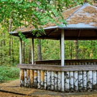 Беседка в лесу :: Дмитрий Конев