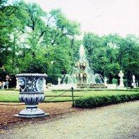 Ваза в Летнем саду :: Дмитрий Ромашев