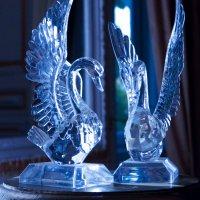 Crystal Swans :: Maggie Aidan