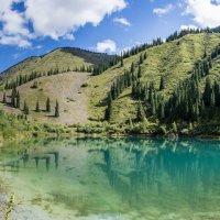 Озеро Каинды, Казахстан :: Alexey alexeyseafarer@gmail.com
