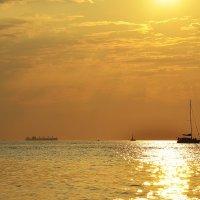 Золото Черного моря :: Вика К.