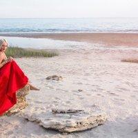 лето... :: Райская птица Бородина