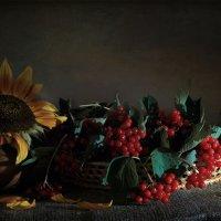 В осень.... :: Алина