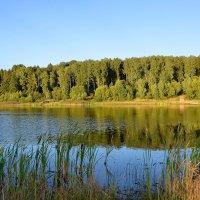 Синее озеро :: Miola
