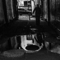Королевство кривых зеркал :: Андрей Михайлин