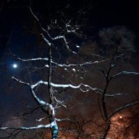 Ночь :: Nn semonov_nn