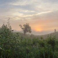 Атмосфера туманного рассвета :: Валентин Котляров