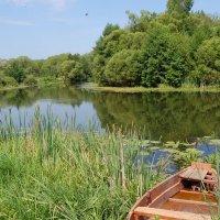 У реки :: Olga Golub