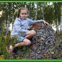 в лесу :: Юлия окладникова