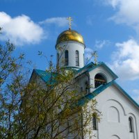 церковь Серафима Вырицкого :: Елена