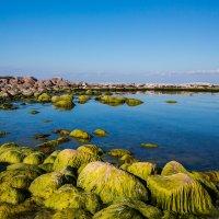 зеленые камни :: Николай Леммер