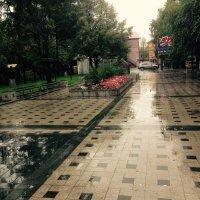 дождь :: Вадим Нечаев