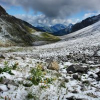 первый снег :: Elena Wymann