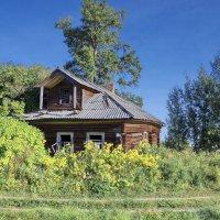 Деревня Филисово (сюжет третий) :: Валерий Талашов