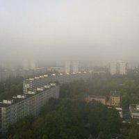 Утро мглою небо кроет... :: Николай Дони