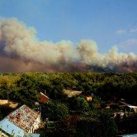 Лесной пожар :: Александр Облещенко