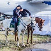 Полиция :: Дмитрий Чулков