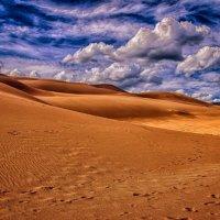 Дюны Колорадо. :: Gene Brumer