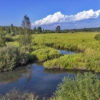 Спокойная река :: Анатолий Иргл