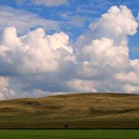 Всё в мире земном преходяще И жизнь, и мирская краса... :: Евгений Юрков