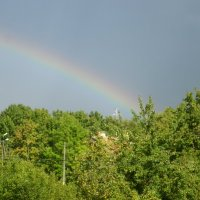 После дождя :: ЕЛЕНА КОЛЕСНИК