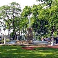 Фонтан в Летнем саду :: Вера Щукина
